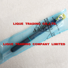 China New Delphi Fuel Injector EJBR05001D for JCB 444  4.4L , 320/06623 ,32006623 , R05001D supplier