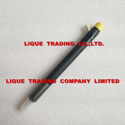 China DELPHI EJBR04901D Genuine and original CR Injector  R04901D , 28280600 , 27890116101 TML 2.2L E4 , New EJBR04901D supplier