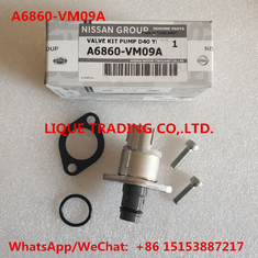 China NISSAN Overhaul kits A6860-VM09A  , A6860VM09A  ,  A6860 VM09A = 1460A037  include valve 294200-0360 supplier