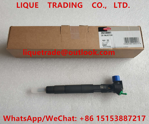 China DELPHI Fuel Injector 28230891 , A6510701387 , 6510701387 Common Rail INJECTOR supplier
