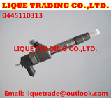 China BOSCH Common Rail injector 0445110313 , 0 445 110 313 , 0445 110 313 factory
